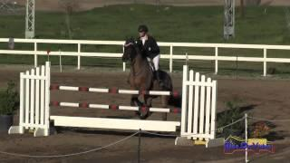 008S Auburn Excell Brady on Royal Lux CIC2* Show Jumping FCHP February 2015