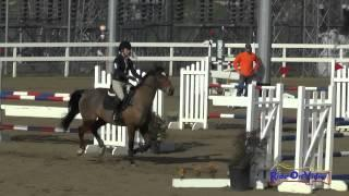 098S Maddy Mazzola on Catch Me If You Can IV Intermediate Show Jumping FCHP January 2015
