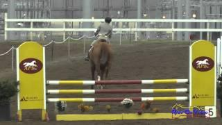 070S Mattea Curtis on Around the World Open Training Show Jumping FCHP January 2015
