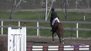 243S Sophie Click on Tomlong Rubia Novice Horse Show Jumping FCHP February 2015