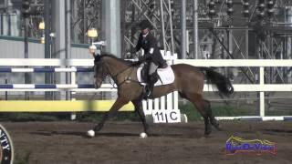 164S Bunnie Sexton on Phiero SR Open Training Show Jumping FCHP February 2015