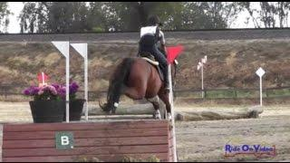 037XC Julie Ann Boyer on High Decorum Preliminary Rider Cross Country FCHP April 2015