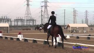 042D Emma Dunn on Southern Comfort Preliminary Rider Dressage Fresno County Horse Park Oct 2014