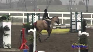 163S Devon Hughes on Snuffleupagus JR Beginner Novice Show Jumping FCHP November 2014