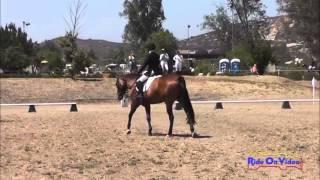 172D Cassidy Wallace Beginner Novice Rider Dressage Copper Meadows June 2013