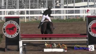 209S Tracy Alves on Desert Pearl SR Novice Show Jumping FCHP February 2015