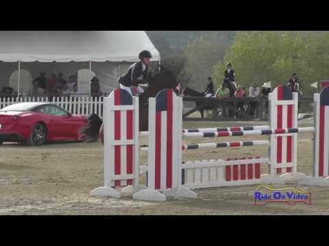 011S Avery Klunick On Ringwood Army CIC2* Show Jumping Woodside October 2016