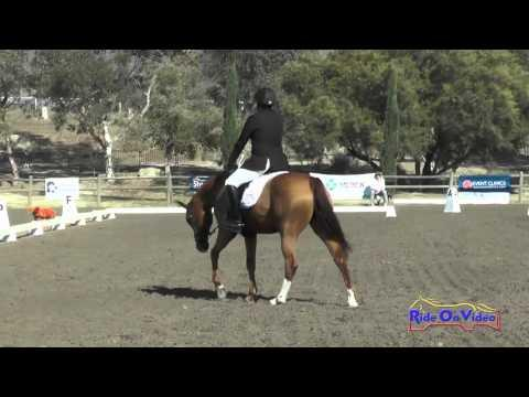 117D John Michael Durr On Danito Training 3-Day Dressage Galway Downs November 2015