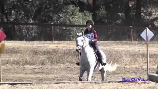 328XC Seraphina Dellaville JR Beginner Novice Cross Country Woodside Int'l Event Oct 2014