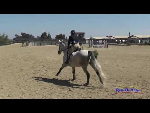 114S Mc Kenzie Miller On FIre And Rain SR Training AM Show Jumping Woodside August 2016