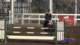 001S Jolie Wentworth on French Polish Intermediate Show Jumping Fresno County Horse Park Oct 2014