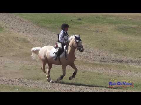 164XC Hayden Brown On Little Lion Man JR Intro Cross Country Shepherd Ranch June 2016