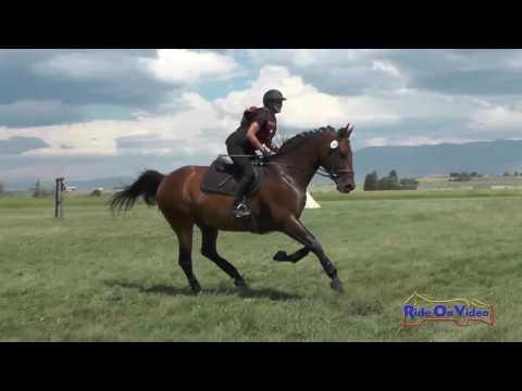 260XC Paula Sweeney On Quick Trick SR Open Training Cross Country Rebecca Farm July 2016