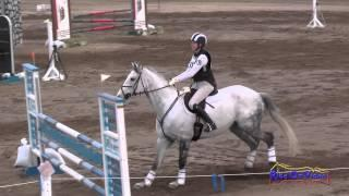 101S Kelsey Holmes on NZB The Chosen One Preliminary Show Jumping Twin Rivers Ranch Feb 2014