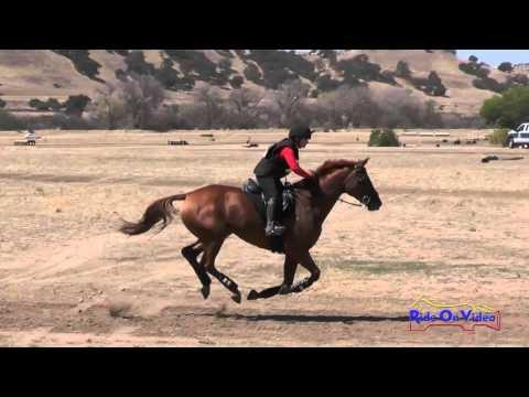 091XC Natalie Rooney On LaCoura Training Horse Cross Country Twin Rivers Ranch September 2015