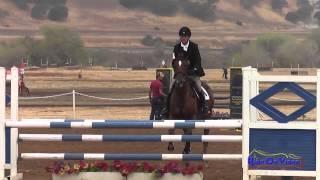 144S Attila Rajnai on Mercury Rose Training Horse Show Jumping Twin Rivers Ranch Sept 2014