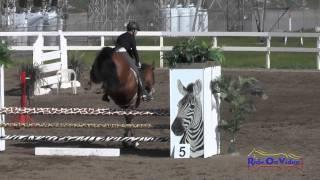 221S Tamra Smith on Exclusive Open Novice Show Jumping FCHP February 2015