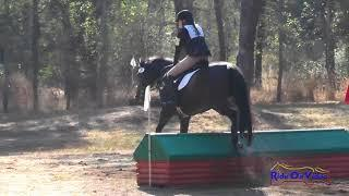 034XC Brianna Davis on Palace Verdes JR Novice Cross Country Eventful Acres September 2017
