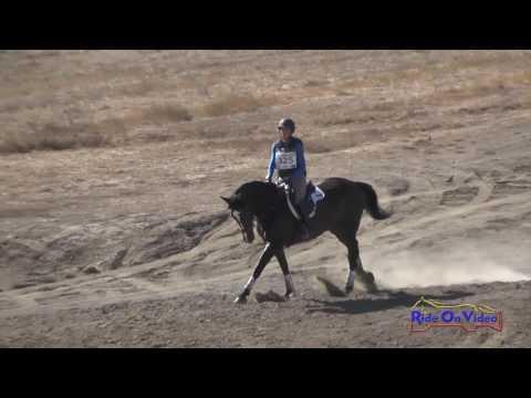 325XC Andrea Baxter On Efinity Novice Horse Cross Country Woodside October 2016