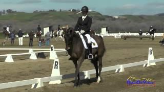 048D Tamra Smith on Sunsprite Syrius Intermediate Dressage Twin Rivers Ranch Feb 2015