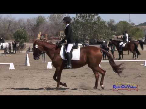 199D Niki Leshgold On Amarna JR Novice Dressage Twin Rivers Ranch Sept. 2016