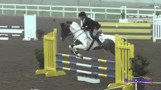 050S Nancy Read on Lillie Open Novice Show Jumping FCHP January 2015