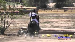 215XC Carolyn Hoffos On Chiquita Open Beginner Novice Cross Country Galway Downs May 2015