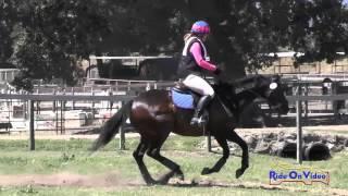 095XC Nicole Rapicavoli On Shabang Shabang Preliminary Rider Cross Country Shepherd Ranch June 2015