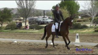 430D Earl McFall on Tropic Star YEH 4Yr Old Dressage Twin Rivers Ranch April 2015