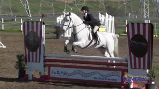 042S Nikki Gai on Century Hills Taylor Maide Open Novice Show Jumping FCHP January 2017