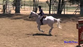 134S Kaley Sapper On He's All That II JR Training Show Jumping Copper Meadows June 2015