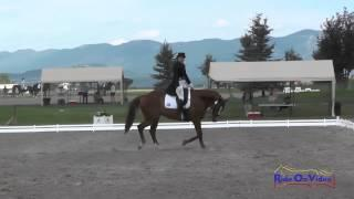 036D Lisa Schultz On JayDee CCI1* Dressage The Event At Rebecca Farm July 2015