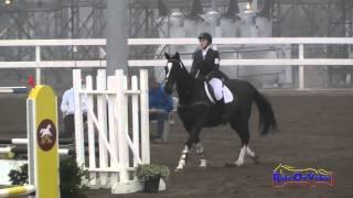 157S Lindsey Giordano on Batman JR Beginner Novice Show Jumping FCHP November 2014
