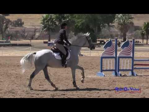 301S Marta Petrenko On Formal Attire SR Beginner Novice Show Jumping Twin Rivers Ranch Sept. 2016