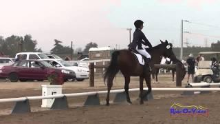 173D Jazmin Holguin on Winter's Fable Intro Dressage Fresno County Horse Park Oct 2014