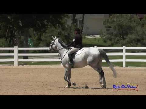 057S Michele Smith On Ivan T Beginner Novice Show Jumping Colorado Horse Park June 2016