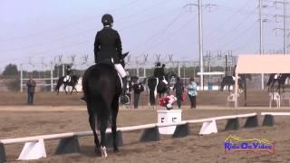 195D Kelly Pugh on Tito Open Training Dressage Fresno County Horse Park Oct 2014