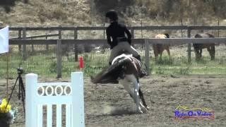 258S Maggie Catalano On Lego Intro Show Jumping Shepherd Ranch June 2015