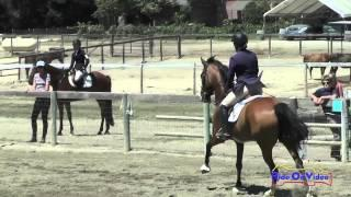 091S Catherine Rischard SR Beginner Novice Show Jumping Shepherd Ranch August 2015