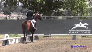 159D Cassidy Wallace on Discover Me JR Beginner Novice Dressage Galway Downs May 2014