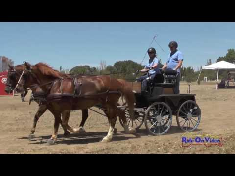 042M Moire Creek Preliminary Pair Horse Marathon Clay Station CDE June 2016