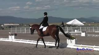 145D Pepa Roth On Wood U Dream Preliminary Dressage The Event At Rebecca Farm July 2015