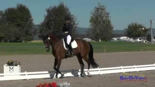012D Robyn Fisher On Betawave CCI1* Dressage The Event At Rebecca Farm July 2015
