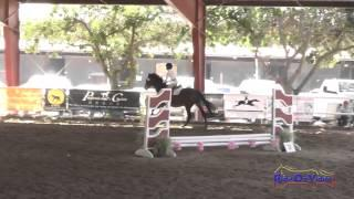 059J1 Aubrey McMichael on Java Intro Jumping Pacific Indoor Eventing October 2014
