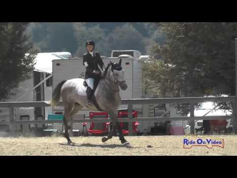 245S Sophie Dixon Sutton On Sophocles Novice Horse Show Jumping Woodside August 2016