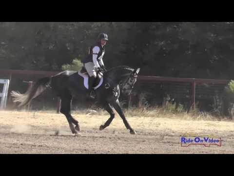 421J Gina Miles On Envy Me RR YEH 4yr Old Championships Jumping Woodside October 2016