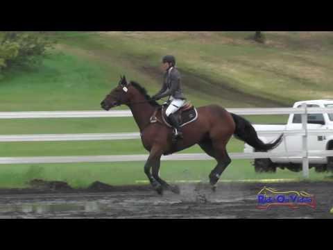 275S Lisa Eppley On Sweet Basil SR Preliminary Show Jumping Spokane Sport Horse HT May 2016