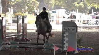 001J1 Logan Farrer on Famous Intro Jumping Pacific Indoor Eventing October 2014