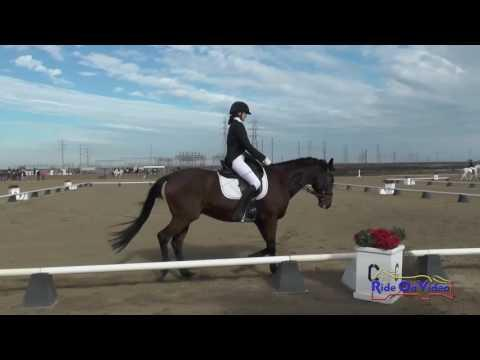 115D Brianna Davis On Palace Verdes JR Beginner Novice Dressage FCHP November 2016