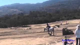 029XC Gina Miles on Contalli Di Revel CIC1* Cross Country Woodside Int'l Event Oct 2014